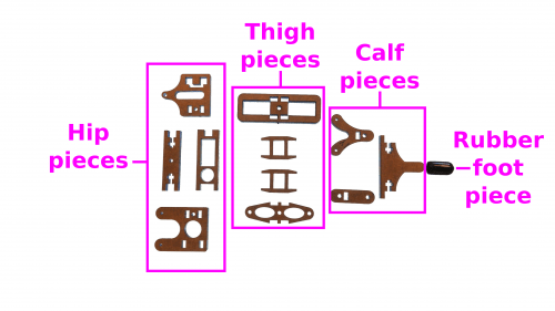 leg-pieces-labeled.jpg